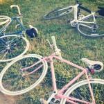 自転車で!お寺巡り&おいしいものを食べに行こう!!~京都編~