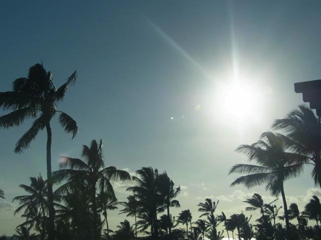 Hawaii(ハワイ)到着