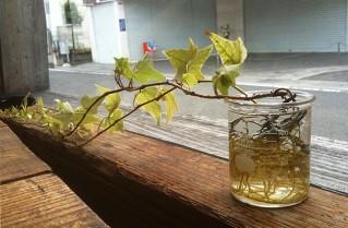和歌山 田辺市のカフェ ..ti