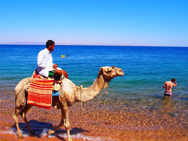 ダハブの海とラクダ